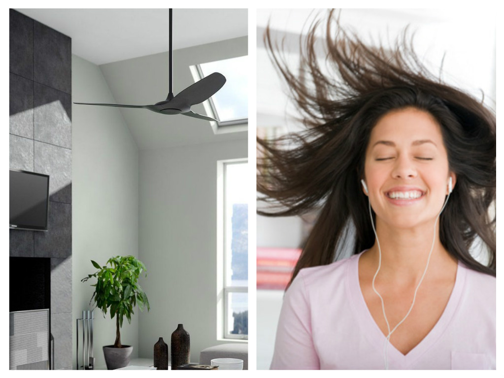 Haiku Home L Series Smart Ceiling Fan