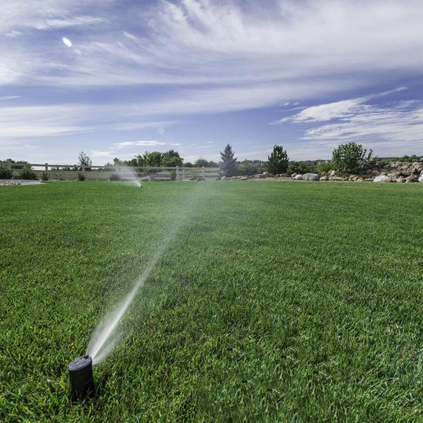 Smart Sprinkler